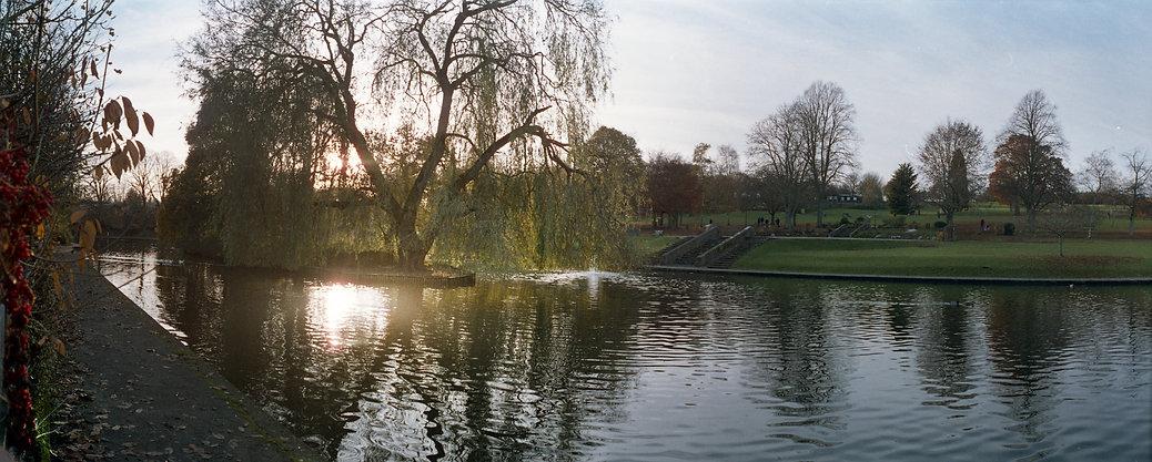 pond 1.jpg