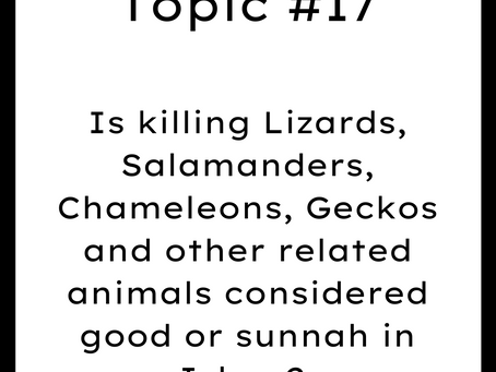 Topic #17: Is killing Lizards, Geckos and other related animals considered good or sunnah in Islam?