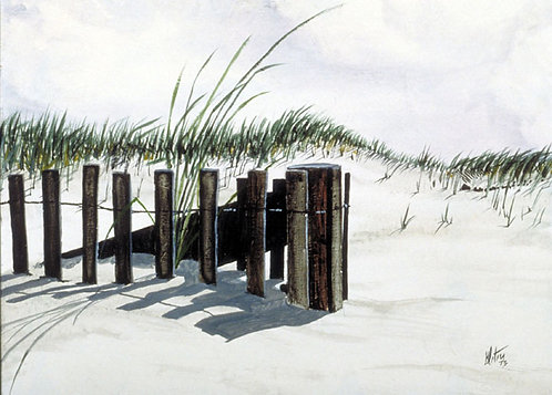 The Sand Fence