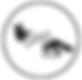 logo website 1_edited_edited.png