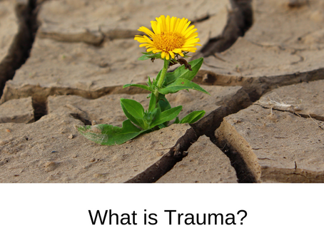What is Trauma?