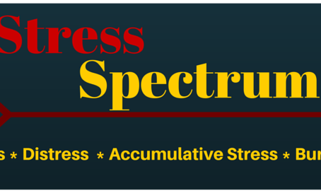 Stress Spectrum: From Eustress to Traumatic Response