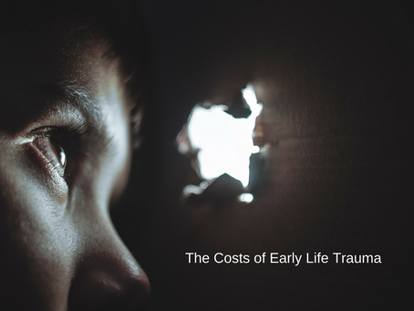The Costs of Early Life Trauma