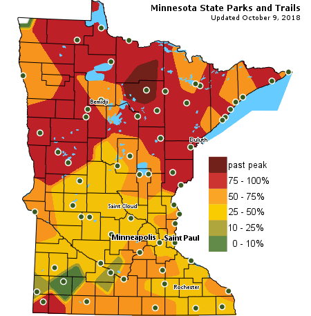 MN Fall Colors Map