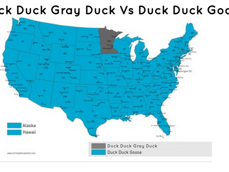 So...why...Gray Duck?