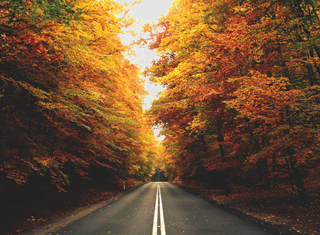 Don't Miss Out on the Beautiful Colors of Fall: Plan a Road Trip today!