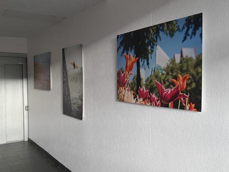Foto's in hal appartementencomplex Den Haag