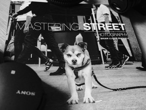 Taking On Brian Lloyd Duckett's | Mastering Street Photography Assignments.