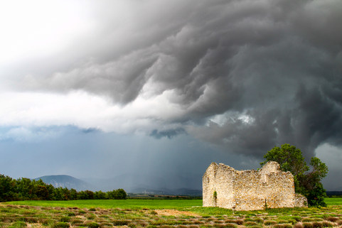 La ruine, l'arbre et l'orage