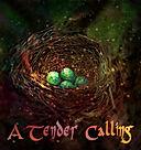 a tender calling.jpg