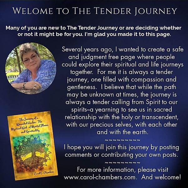 the tender journey.jpg