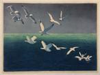 Hans Frank, Seagulls