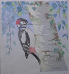Jean Armitage, Great Spotted Woodpecker