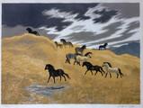 Clifford Webb,                             Welsh Ponies