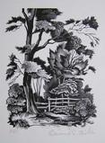 Edward S Billin, Study of Trees