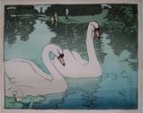 Allen W Seaby, Swans