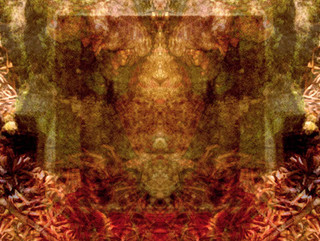 Image 0272-1.jpg
