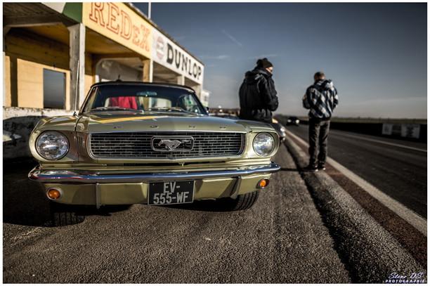 Ford Mustang verte