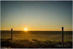 Lever de soleil à la campagne