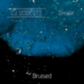 bruised cover art.png