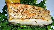 Cape Cod Dennis Sportfishing Recipes