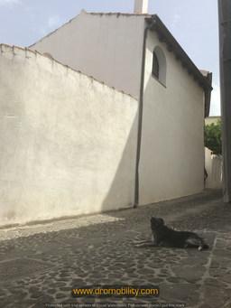 Sardegna - Dromobility (Romina Ciuffa)53