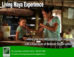 living maya 4