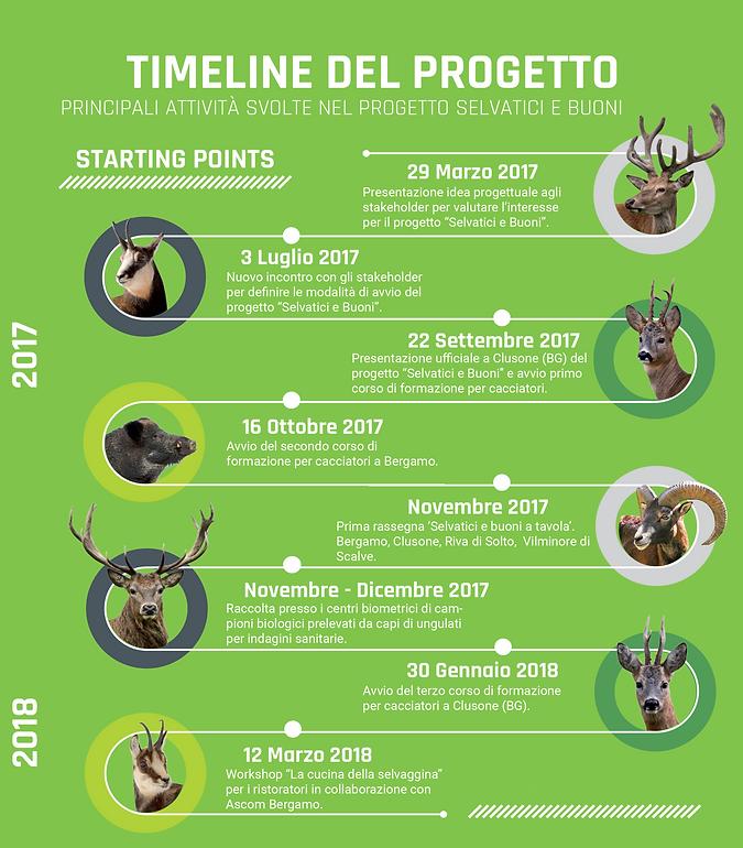 1 timeline.png