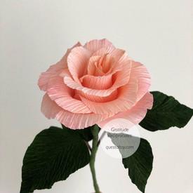 ROSE $14/stalk
