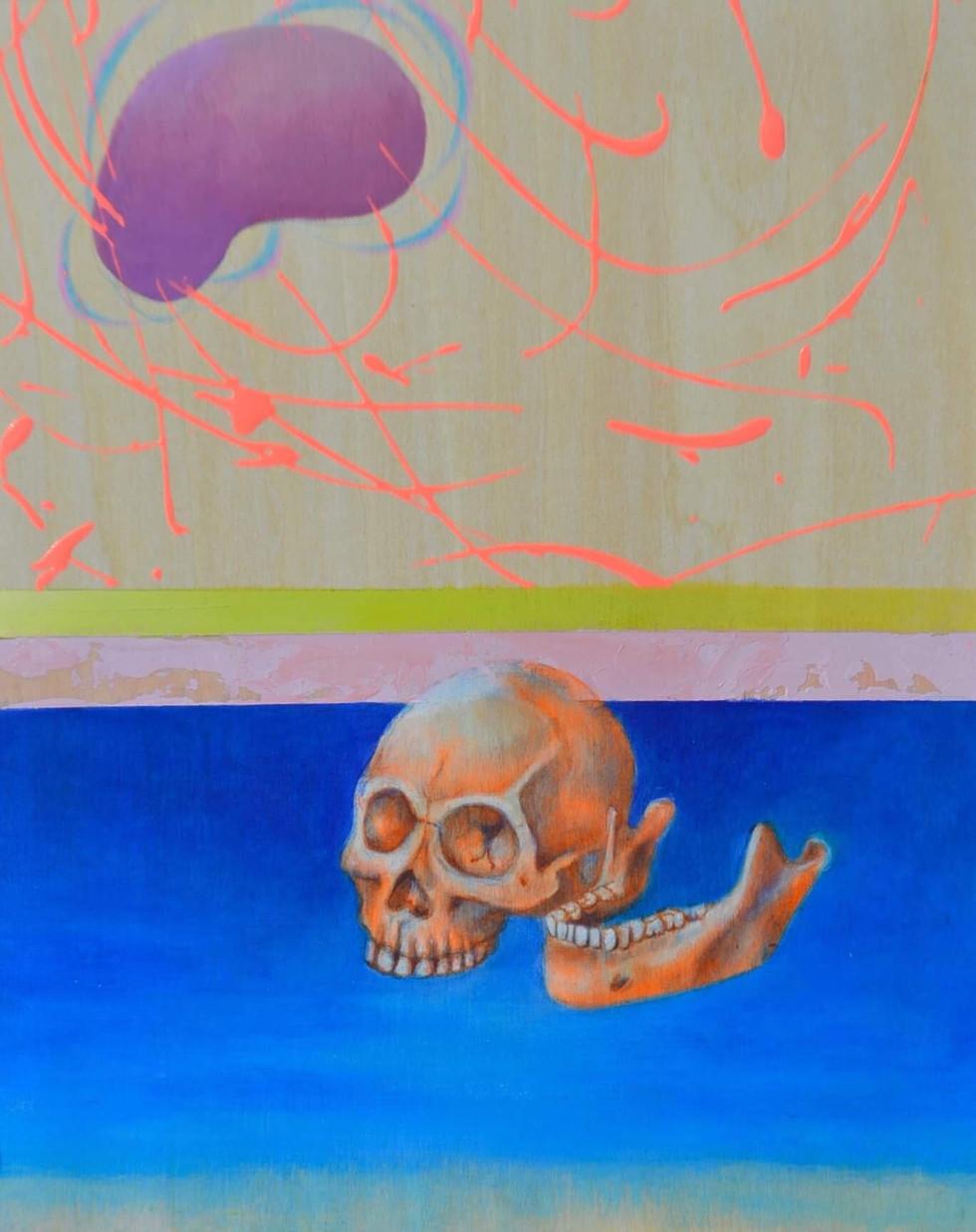 skull study (orange)