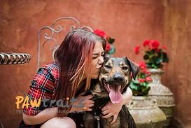 Ringwood Pet Care