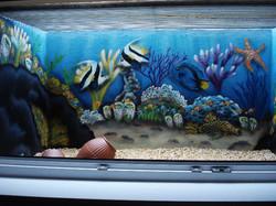 Aquarium Luftschutzkeller