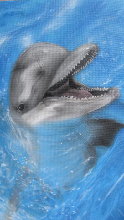 Delfin291109