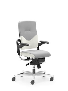 Xenium_Freework_Chair_RN60061.jpg