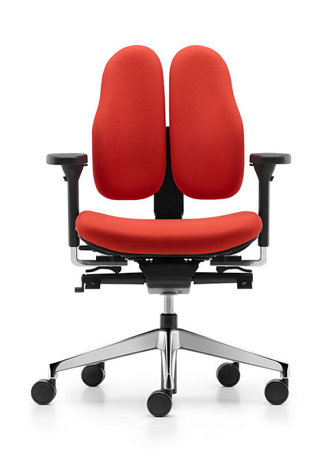 Type_11_DuoBack_Office_Chair_SS1.jpg