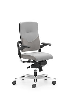 Xenium_Freework_Chair_RN60165.jpg