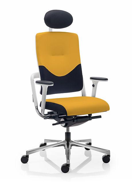 Xenium_Classic_Back_Ergonomic_Office_Chair