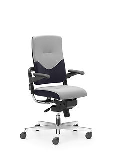 Xenium_Freework_Chair_RN66064.jpg