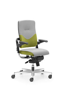 Xenium_Freework_Chair_RN68056.jpg