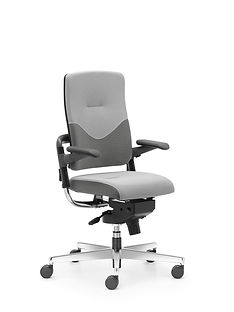 Xenium_Freework_Chair_RN60011.jpg
