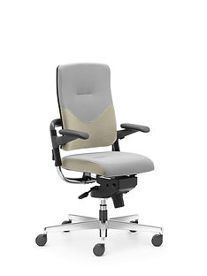 Xenium_Freework_Chair_RN61128.jpg