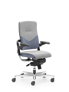 Xenium_Freework_Chair_RN65078.jpg