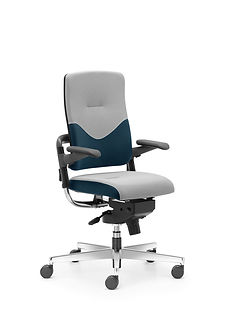 Xenium_Freework_Chair_RN66140.jpg