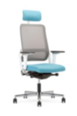 Xilium Mesh back chair.jpg