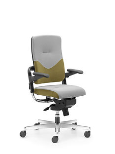 Xenium_Freework_Chair_RN62064.jpg