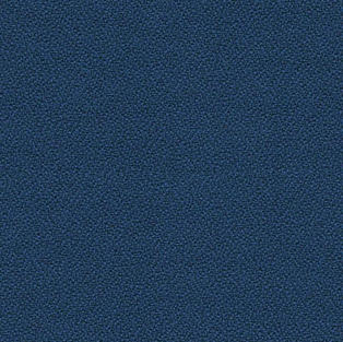 XTREME by Camira