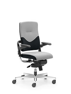 Xenium_Freework_Chair_RN60999.jpg
