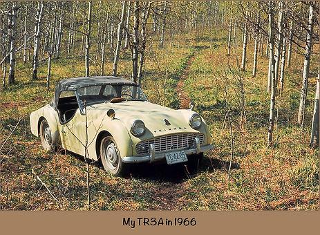 TR3A-1965-Wix.jpg