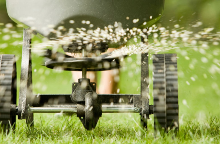 Fall Overseeding For Your Lawn