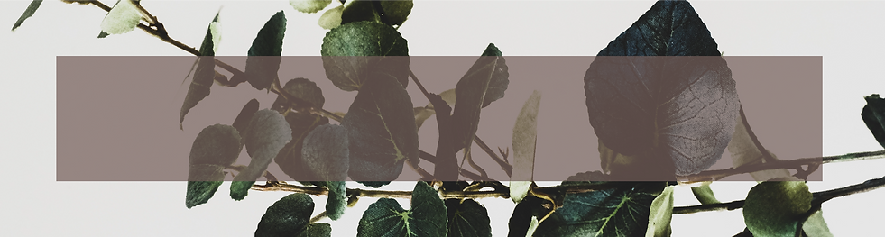 Botanical_Banner.png